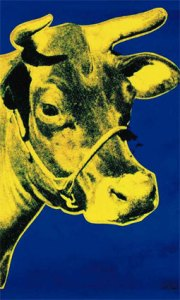 Yellow Cow on Blue Background.